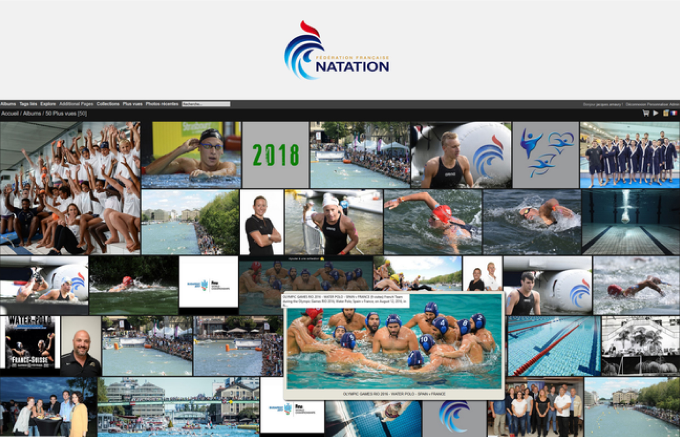 French swimming federation